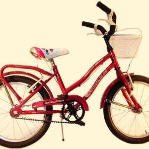 Bicicleta primat. r.16 c/f y can des