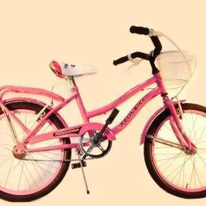 Bicicleta primat. r.20 c/f y can des