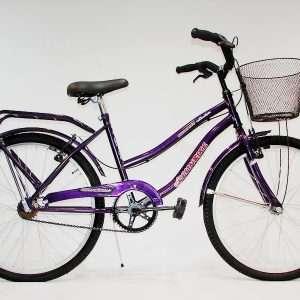 Bicicleta primat. r.24 c/f y can des