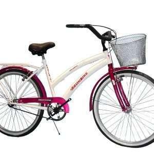 Bicicleta primat. r.26 de lujo des
